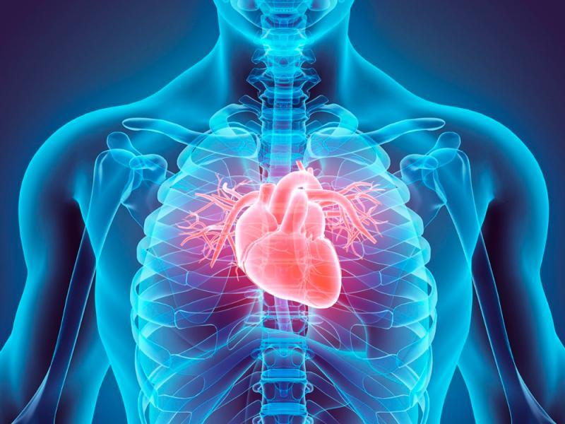Cardiology  Turkey